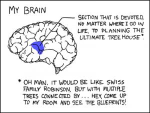 Steven Cohen Forensic Psychiatrist  brain